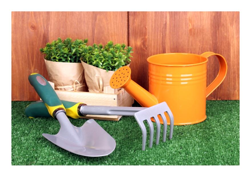 Jak założyć trawnik czyli poradnik zakładanie trawnika ? planowanie krok po kroku